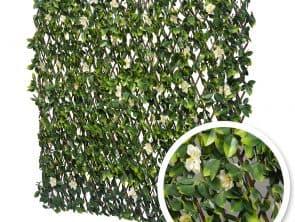 Treillis extensible feuilles de jasmin